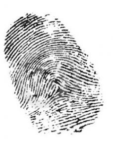 investigazioni-informatiche
